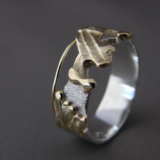 Zilver met goud ringen